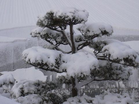 0330_積雪.jpg
